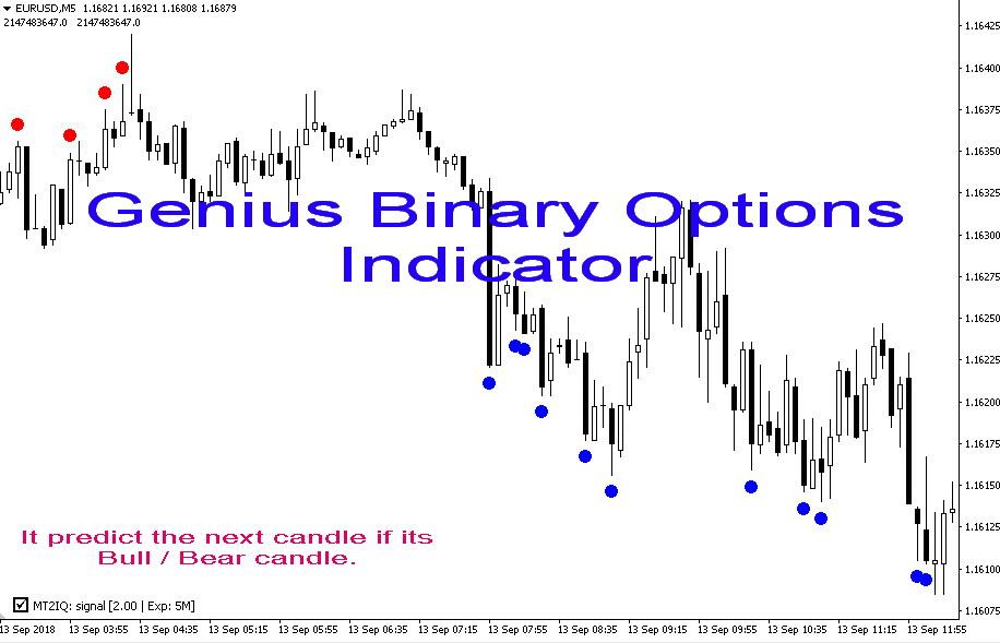 Genius Binary Options indicator | fxsklad ru