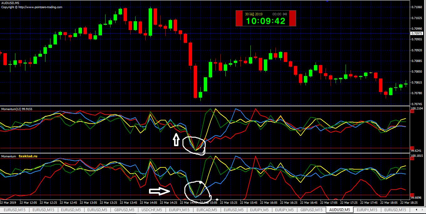 momentum+momentum correct.PNG